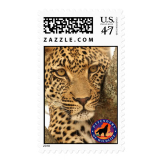 Leopard in a tree postage stamp