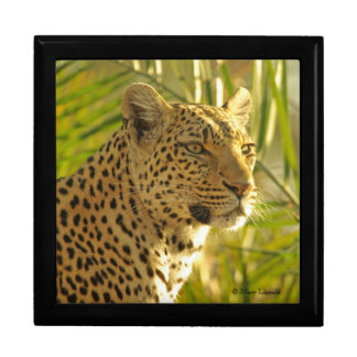 Leopard in Palm Leaves Jewelry Box