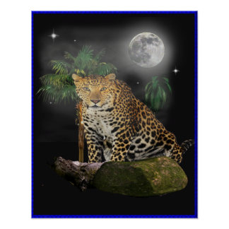 leopard in the night poster