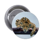 Leopard in the tree 1 pin