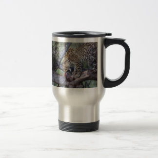 Leopard in tree with kill wildlife mugs & cups