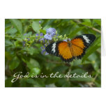 Leopard Lacewing Butterfly Card