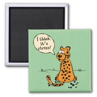 Leopard losing spots - I think it's stress Magnet