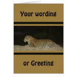 Leopard lying on sand bank wildlife cards