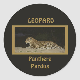Leopard lying on sand bank wildlife stickers