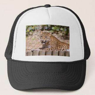Leopard lying trucker hat