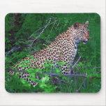 Leopard Mousepads