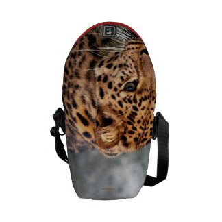 Leopard on the Prowl Cool Animal Pattern 2013 Messenger Bag