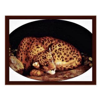 Leopard Oval By Stubbs George Postcard