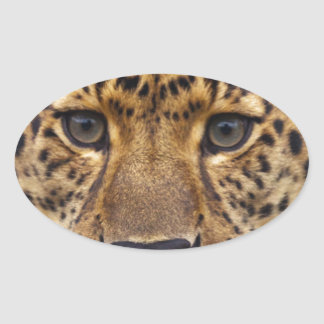 Leopard Oval Sticker
