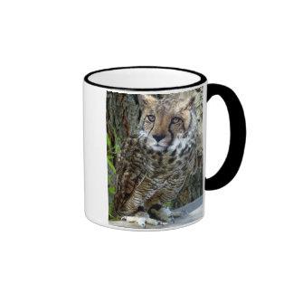 Leopard Owl Mug