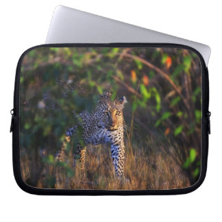 Leopard (Panthera Pardus) as seen in the Masai Laptop Sleeve