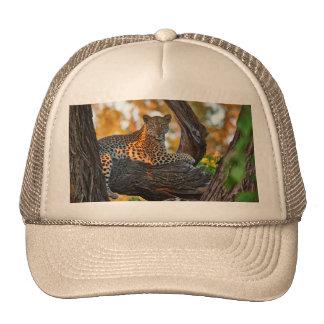 Leopard (Panthera pardus) Trucker Hat