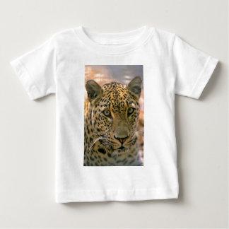 Leopard (Panthera pardus), head portrait, close-up Baby T-Shirt