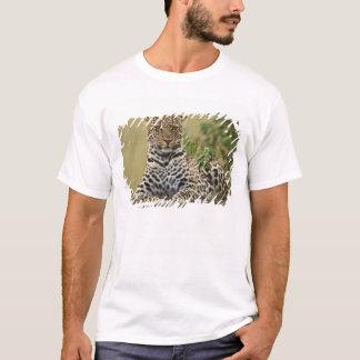 Leopard, Panthera pardus. Masai Mara Game T-Shirt