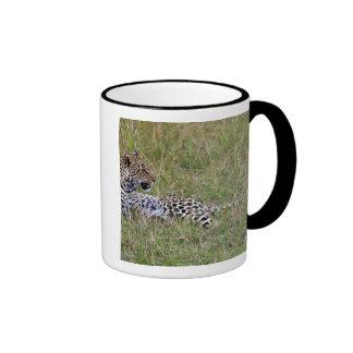 Leopard (Panthera pardus) resting in grass, Ringer Mug