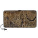 Leopard Panthera pardus) with cub, Masai Mara Portable Speaker