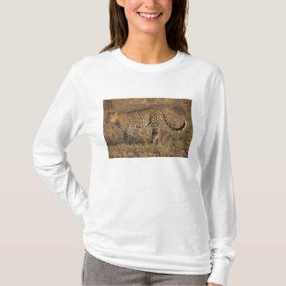 Leopard Panthera pardus) with cub, Masai Mara T-Shirt