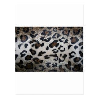 Leopard pattern, natural color fake fur closeup postcard