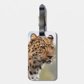 Leopard Photo Bag Tag