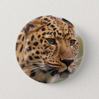 Leopard Photo Button
