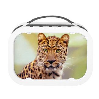 Leopard Photograph Lunch Boxes