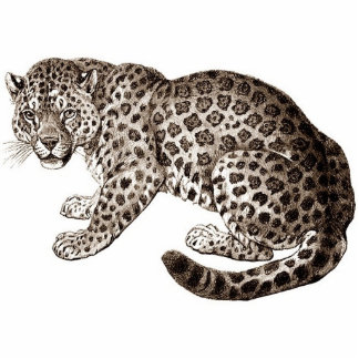 Leopard Acrylic Cut Out