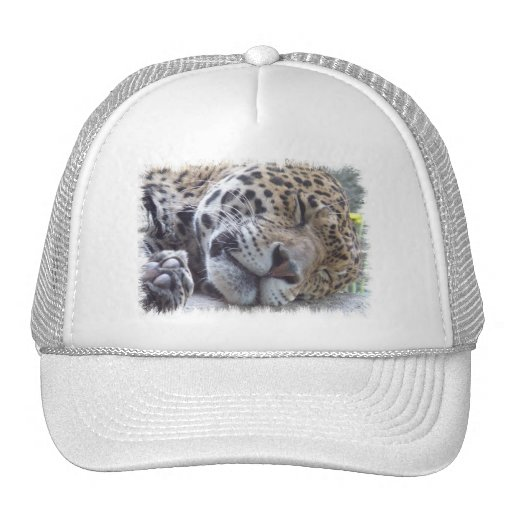Leopard Picture Baseball Hat