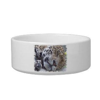 Leopard Picture Pet Bowl