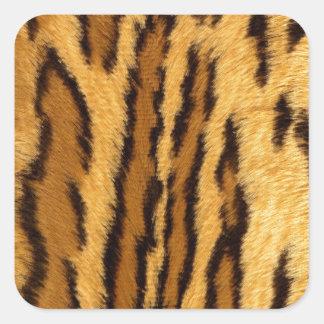 Leopard Pint exotic animal Square Sticker