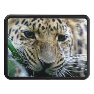 Leopard Trailer Hitch Covers