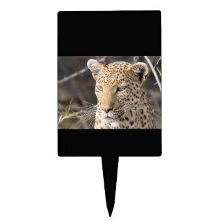 Leopard portrait cake topper