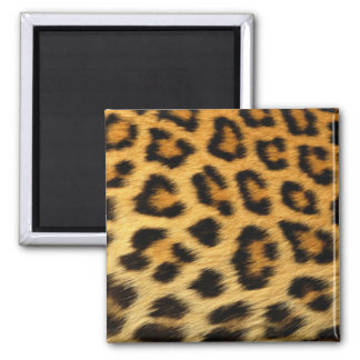 Leopard Print 2 Inch Square Magnet