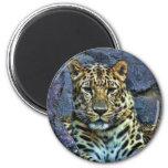 Leopard Refrigerator Magnet