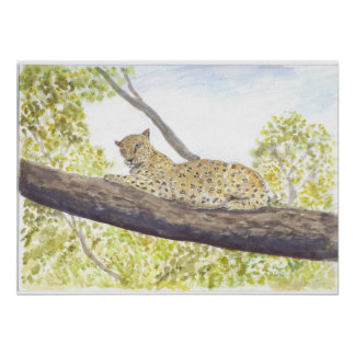 Leopard Resting in a Tree Print