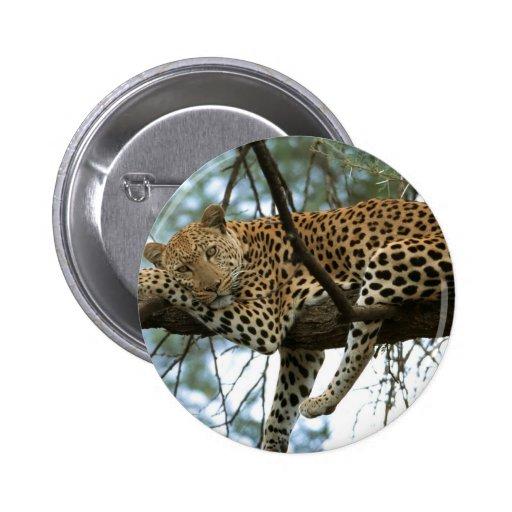 Leopard Resting in Tree Button