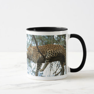 Leopard Resting in Tree Mug