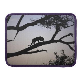 Leopard silhouette in a tree, Kenya Sleeve For MacBook Pro