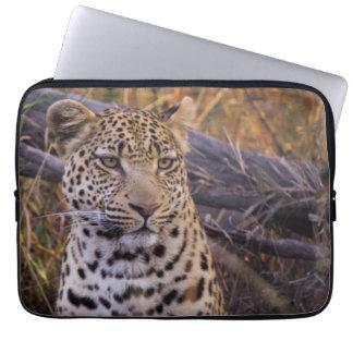 Leopard sitting, Botswana, Africa Laptop Sleeve