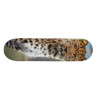 Leopard Custom Skate Board