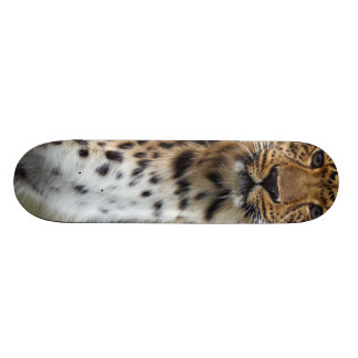 Leopard Skate Decks