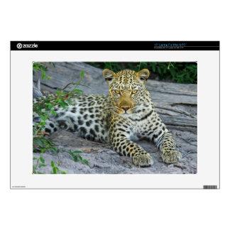 """Leopard 15"""" Laptop Decal"""