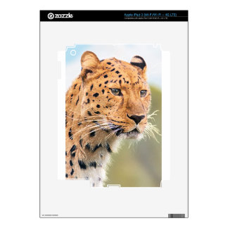 LEOPARD iPad 3 SKINS