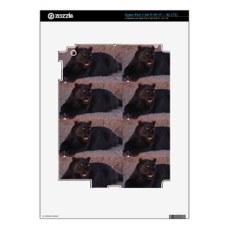 Leopard iPad 3 Decal