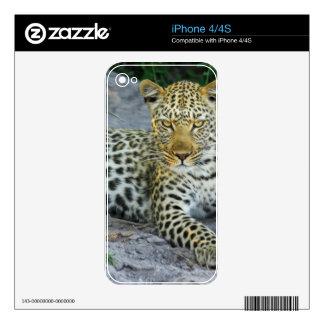 Leopard iPhone 4 Skin
