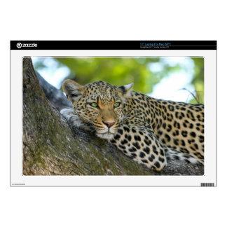 "Leopard Skin For 17"" Laptop"
