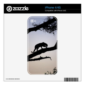 Leopard Skin For iPhone 4