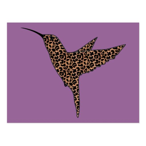 Leopard Spots Hummingbird Postcard