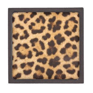 Leopard Spots Jewelry Box
