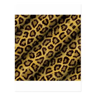 Leopard Spots Postcard